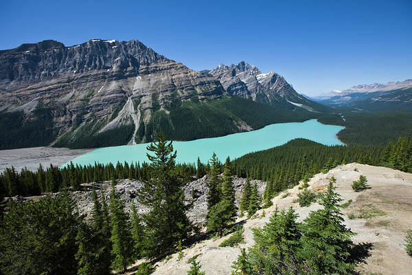 Peyto Lake Wall Art - Photograph - Aerial View Of Peyto Lake, Banff by Altrendo Nature