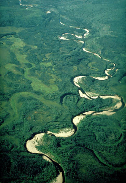 Bow River Wall Art - Photograph - Aerial View Of River Meanders And Ox-bow Lake by Dr. Robert Spicer/science Photo Library