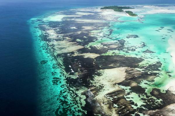 Atoll Photograph - Aerial View Of St Joseph Atoll by Peter Chadwick