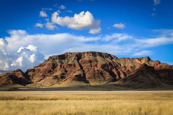 Aferican Grass And Mountain In Sossusvlei Art Print