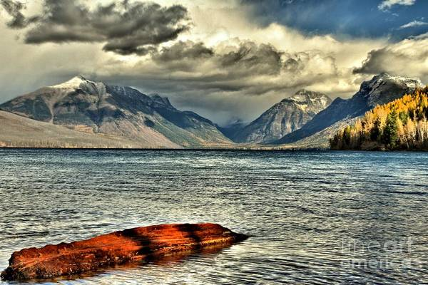 Photograph - Afloat by Adam Jewell