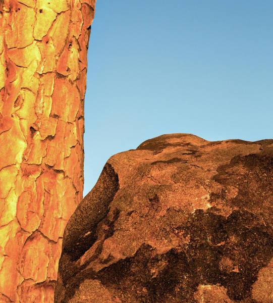 Wall Art - Photograph - Africa, Namibia, Keetmanshoop by Jaynes Gallery