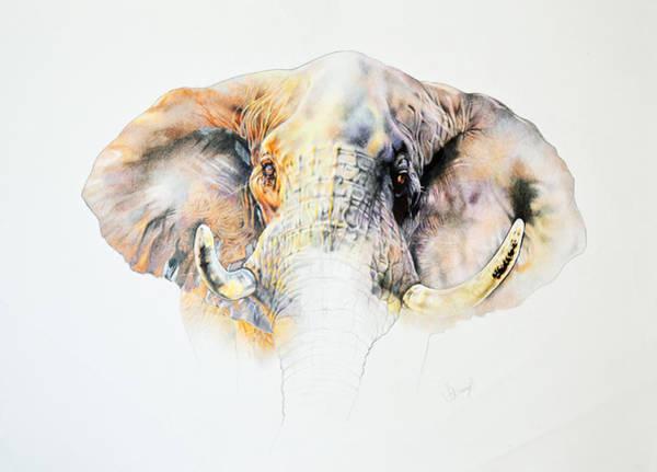 Samantha Painting - African Bull Elephant by Samantha Baguley