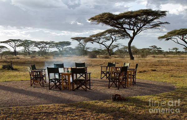 Photograph - African Campfire by Chris Scroggins