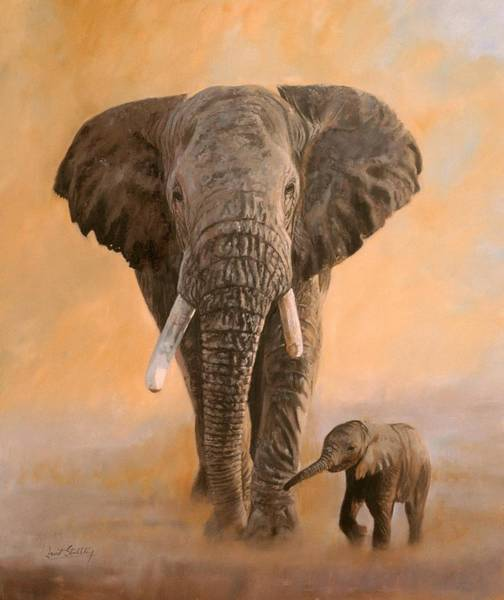 Misty Wall Art - Painting - African Elephants by David Stribbling