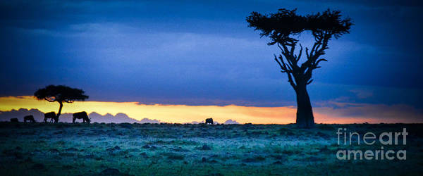 Photograph - African Panoramic Sunset Landscape by Gary Keesler