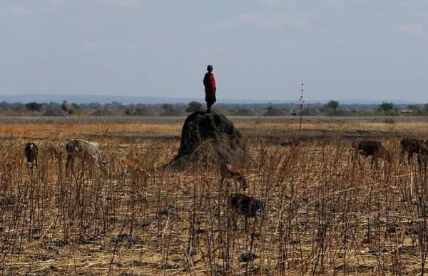 Katherine Green Wall Art - Photograph - African Series Masai Boy by Katherine Green
