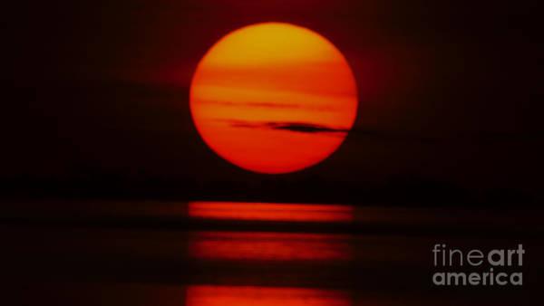 Photograph - African Sun by Mareko Marciniak