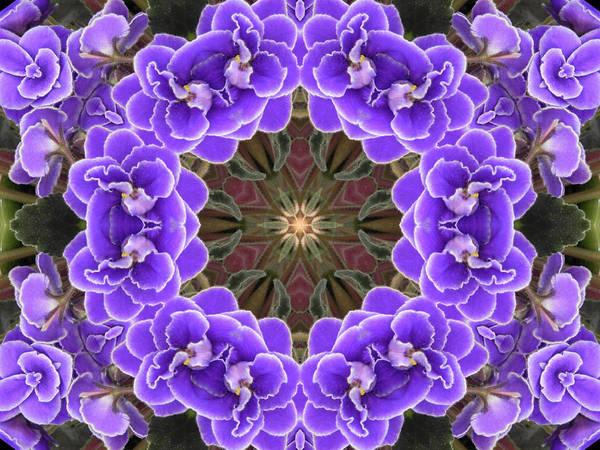 Digital Art - African Violet Mandala by Diane Lynn Hix
