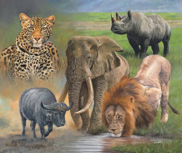 Big Cat Wall Art - Painting - Africa's Big Five by David Stribbling
