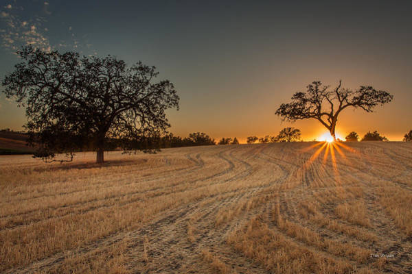 Photograph - After Harvest Sunset by Tim Bryan