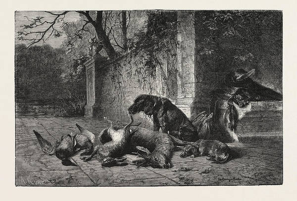 Duck Hunting Drawing - After The Hunt, Dogs, Deer, Hare, Ducks by English School