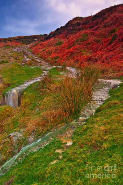 Photograph - After The Rain - Moorland Streams by Martyn Arnold