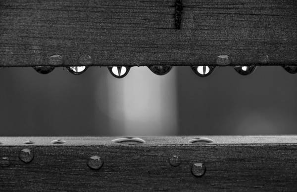 Photograph - After The Rain by Ross G Strachan