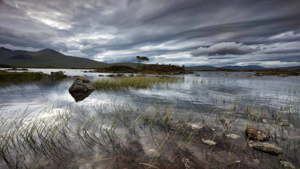 Wall Art - Photograph - After The Storm by Guido Tramontano Guerritore