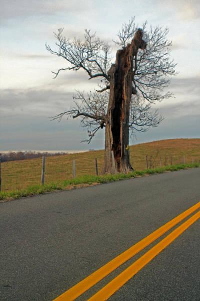 Photograph - After The Storm by Jennifer Robin