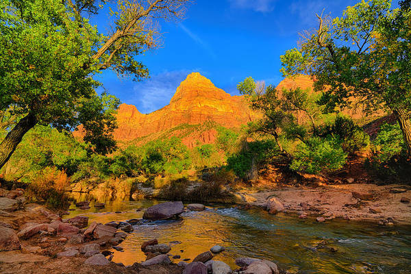 Photograph - Afternoon Along The Virgin River by Greg Norrell
