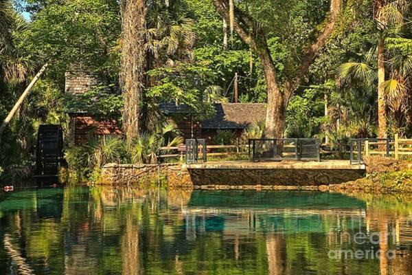 Photograph - Afternoon At Juniper Springs by Adam Jewell