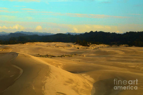 Photograph - Afternoon At Oregon Dunes by Adam Jewell