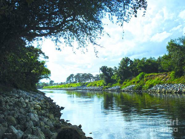 Photograph - Afternoon At Taylor Creek by Megan Dirsa-DuBois