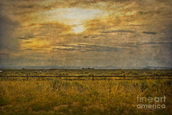 Photograph - Afternoon by Charles Muhle