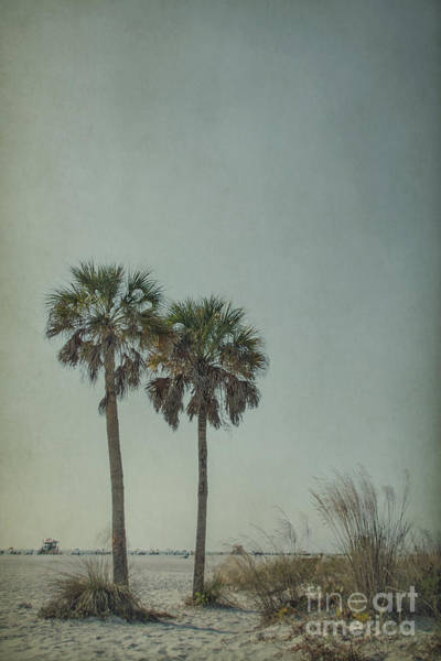 South Florida Wall Art - Photograph - Afternoon Delight by Evelina Kremsdorf
