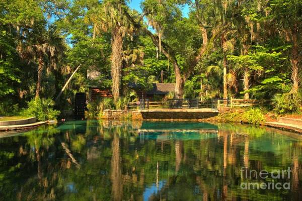 Photograph - Afternoon Reflections At Juniper Springs by Adam Jewell