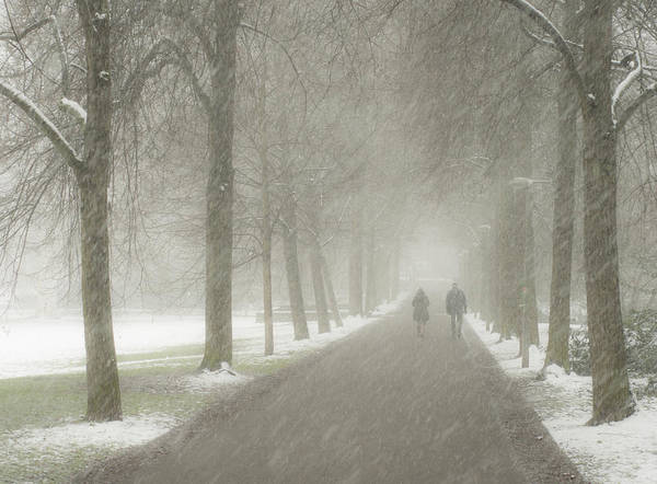 Photograph - Afternoon Winter Stroll by Miguel Winterpacht