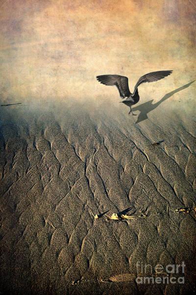 Photograph - Against The Tide by Ellen Cotton