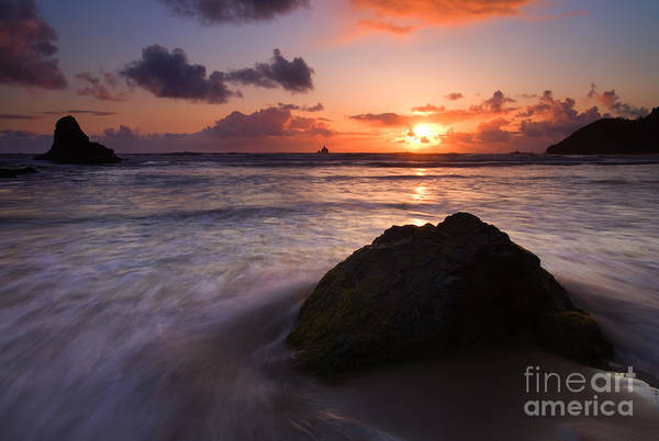 Ecola State Park Photograph - Against The Tide by Mike  Dawson