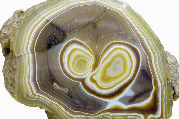 Geodes Photograph - Agate Geode Sliced by Science Stock Photography/science Photo Library