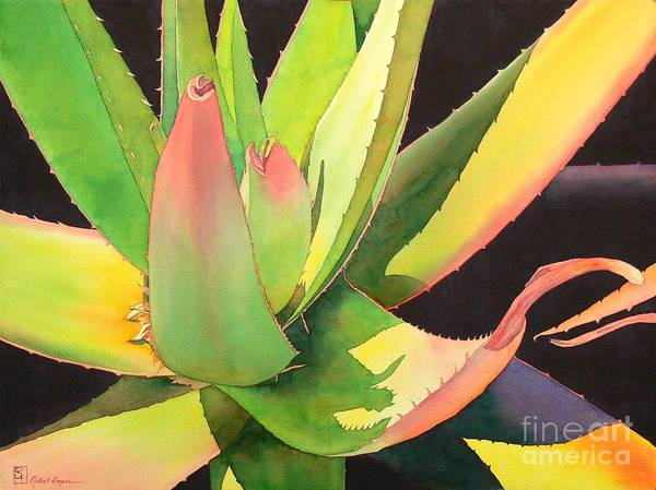 Wall Art - Painting - Agave by Robert Hooper