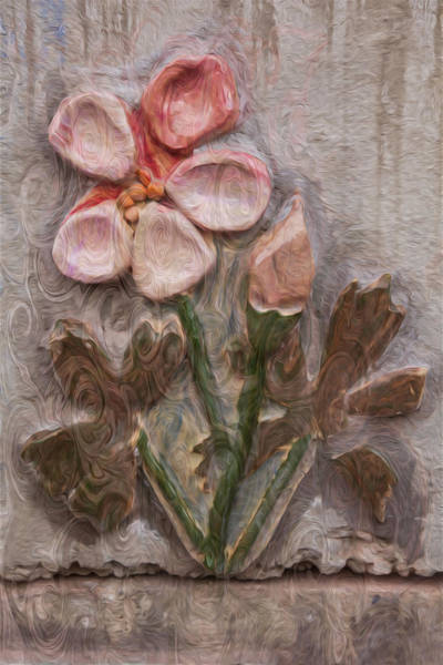 Painting - Aged Pink Beauty by Omaste Witkowski