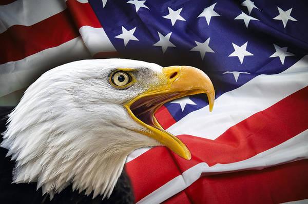 Wall Art - Digital Art - Aggressive Eagle And United States Flag by Daniel Hagerman