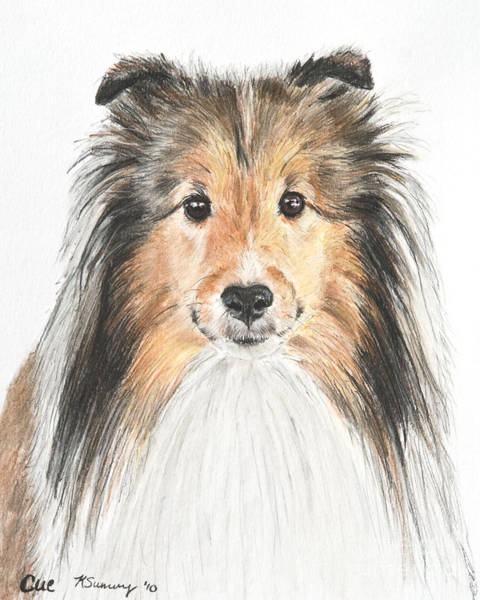 Art Print featuring the pastel Agility Dog Sheltie In Pastel by Kate Sumners