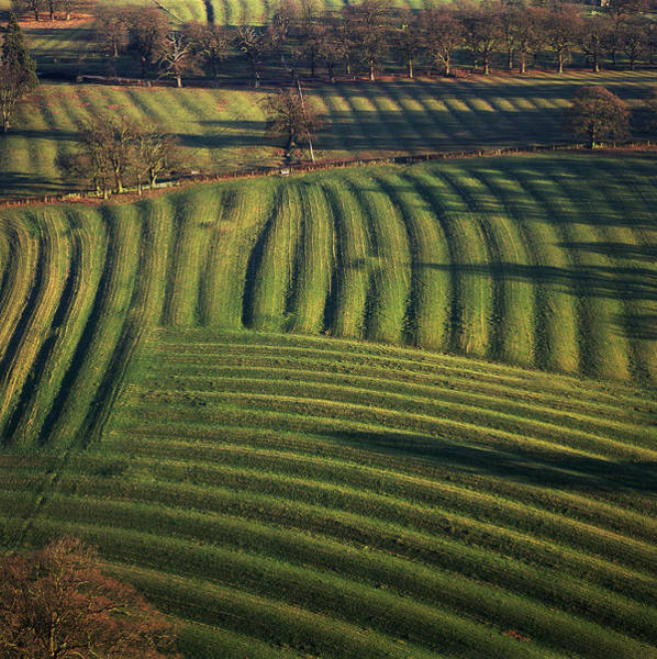 Row Crops Photograph - Agricultural Fields by Skyscan/science Photo Library