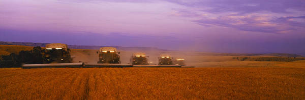 Expanse Photograph - Agriculture - Five Gleaner Combines by Timothy Hearsum