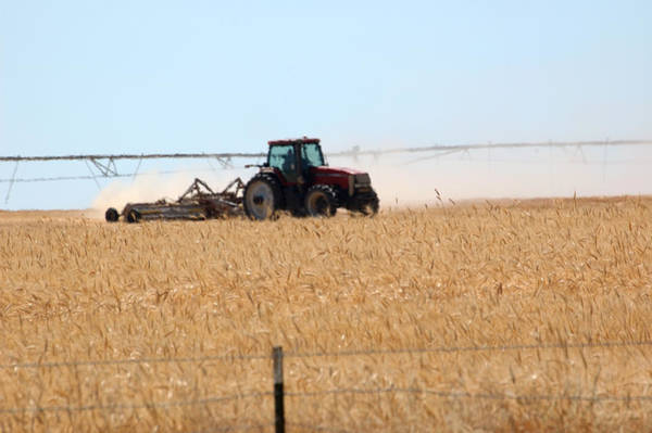 Photograph - Agriculture In Southern Idaho.  by Rob Huntley