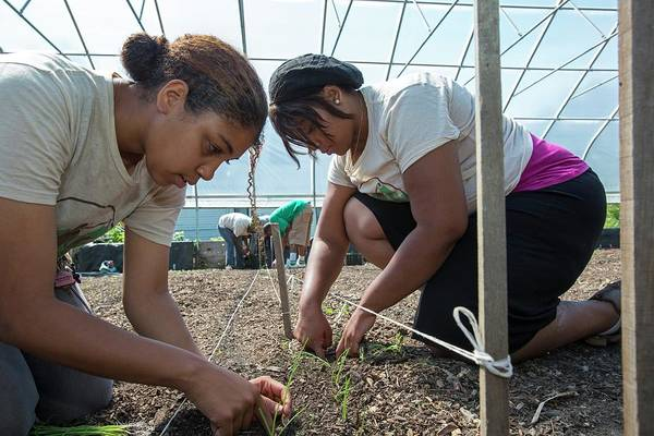 Non Profit Photograph - Agriculture Students Planting Onions by Jim West