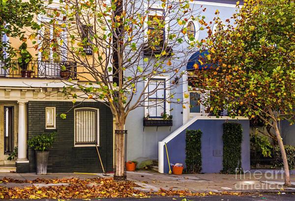 Photograph - Ah Autumn by Kate Brown