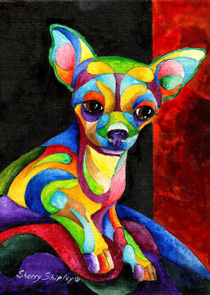 Painting - Ah Chihuahua by Sherry Shipley