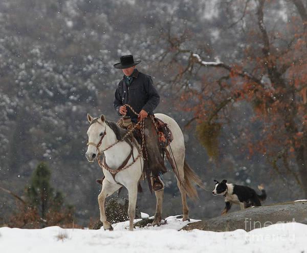 Photograph - Ahwahnee Cowboy by Diane Bohna