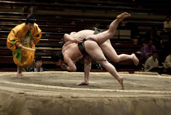 twink-sumo-wrestler-photos-pussy