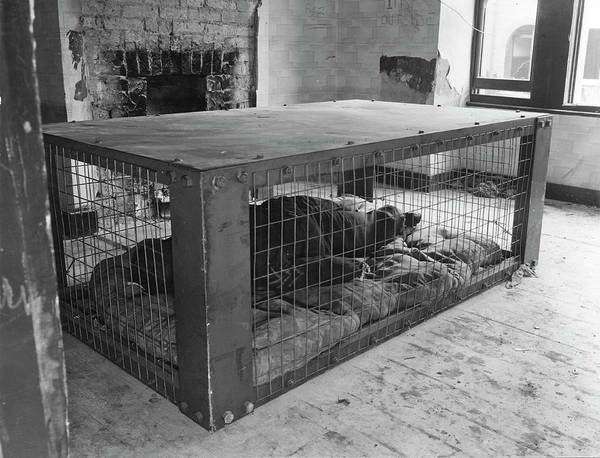 Shelter Photograph - Air Raid Shelter Training by Oxford University Images/science Photo Library
