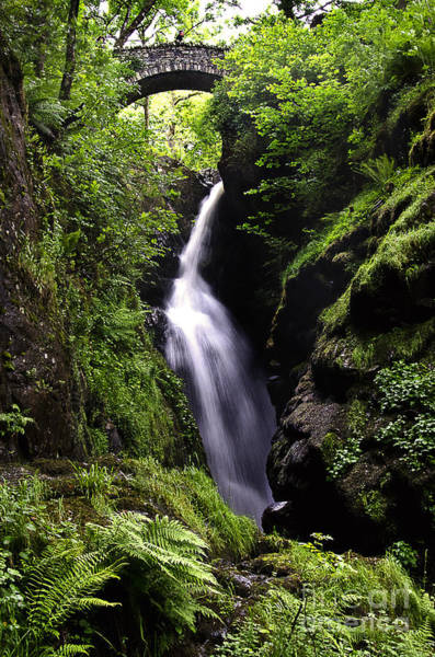 Aira Force Wall Art - Photograph - Aira Force Cumbria by Ian Lewis