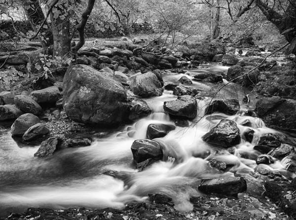 Wall Art - Photograph - Aira Force by Graham Moore