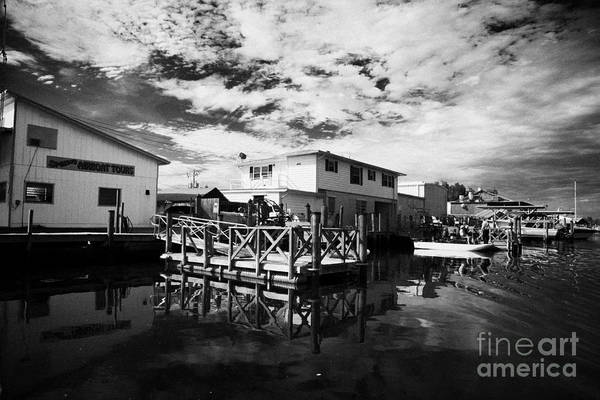 Airboat Photograph - Airboat Rides In Everglades City Florida Everglades Usa by Joe Fox