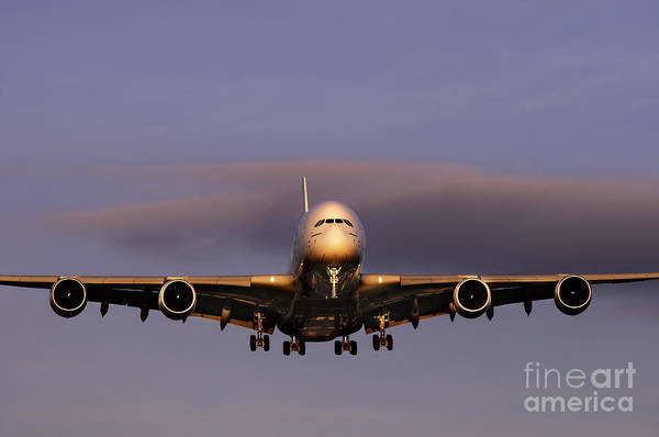 Airbus A380 Wall Art - Photograph - Airbus A380 by Colin Woods