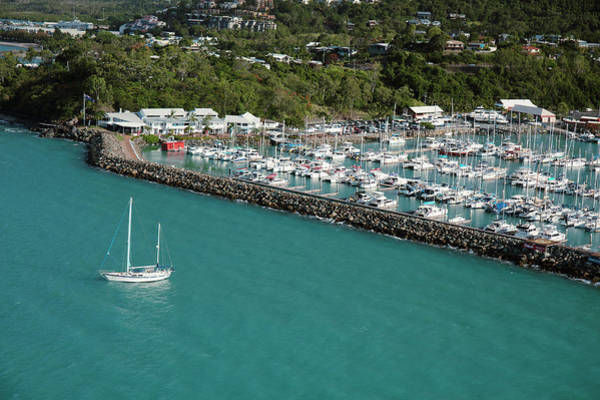Wall Art - Photograph - Airlie Beach Harbour by Michael Szoenyi/science Photo Library