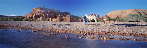 Ait Benhaddou Photograph - Ait Benhaddou Morocco by Animal Images